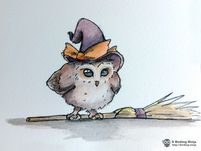 Owl witch