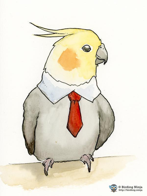 Cockatiel in a Tie Watercolor